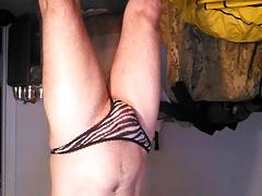 Zebra panties upside down