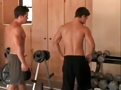 muscled gay guys working out